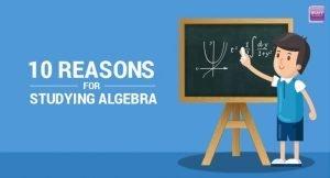 Reasons for Studying Algebra
