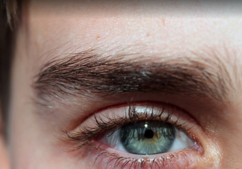 Ultimate Guide to Eyebrow Transplants